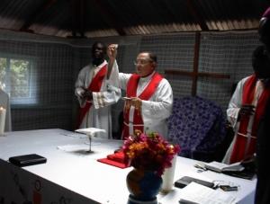 fr. francis celebrating